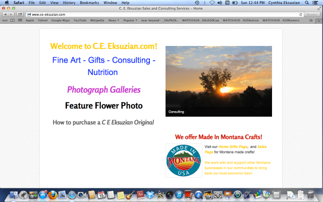 Welcome to C E Eksuzian Sales & Consulting Services