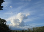 The cloud is a fox.  C. E. Eksuzian