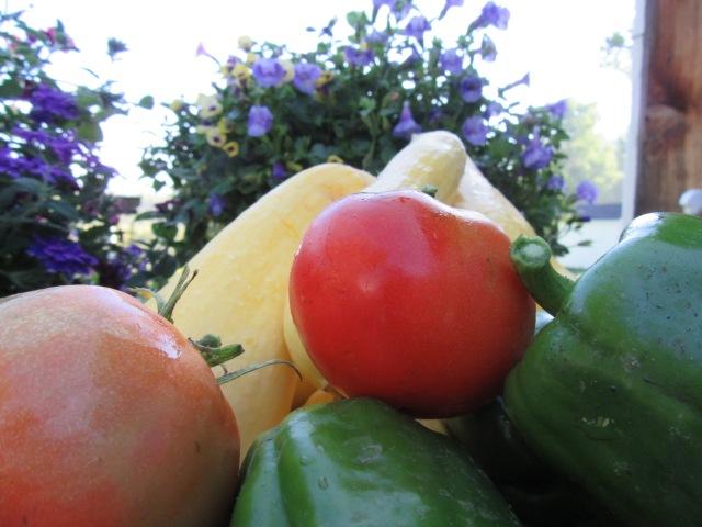 Summer Harvest C E Eksuzian 2015